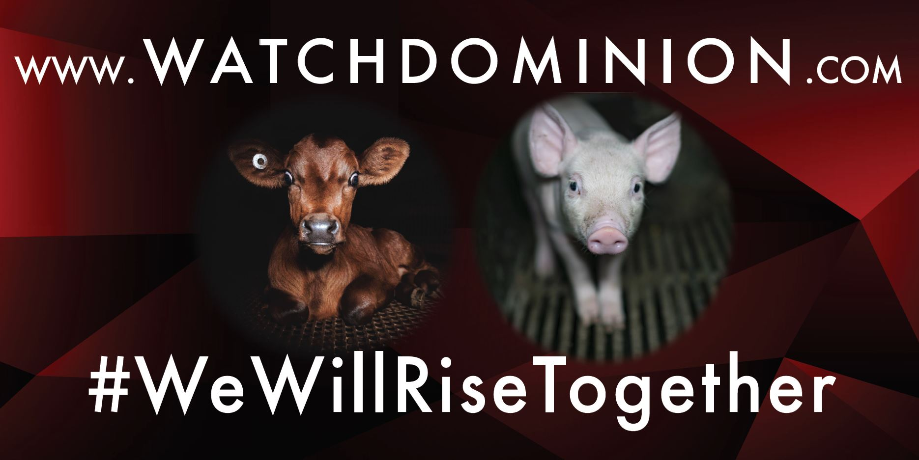 WatchDominion.com - We Will Rise Together #2a