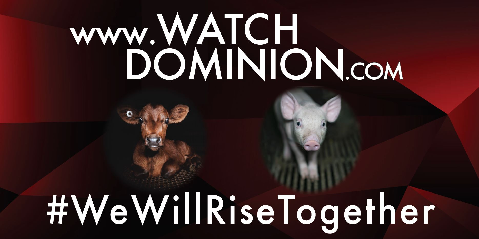 WatchDominion.com - We Will Rise Together #2b